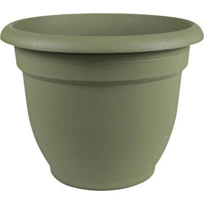 Bloem Ariana 12 In. Plastic Self Watering Thyme Green Planter