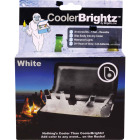 Cooler Brightz White MicroLED 30-Bulb 5Ft. Cooler Light Set Image 1